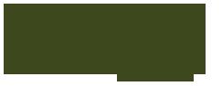 Allure Beaute Logo